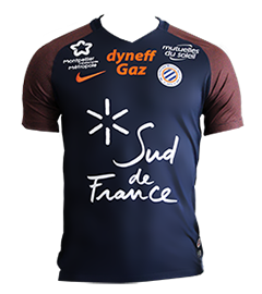 Maillot 2017-2018 DOM